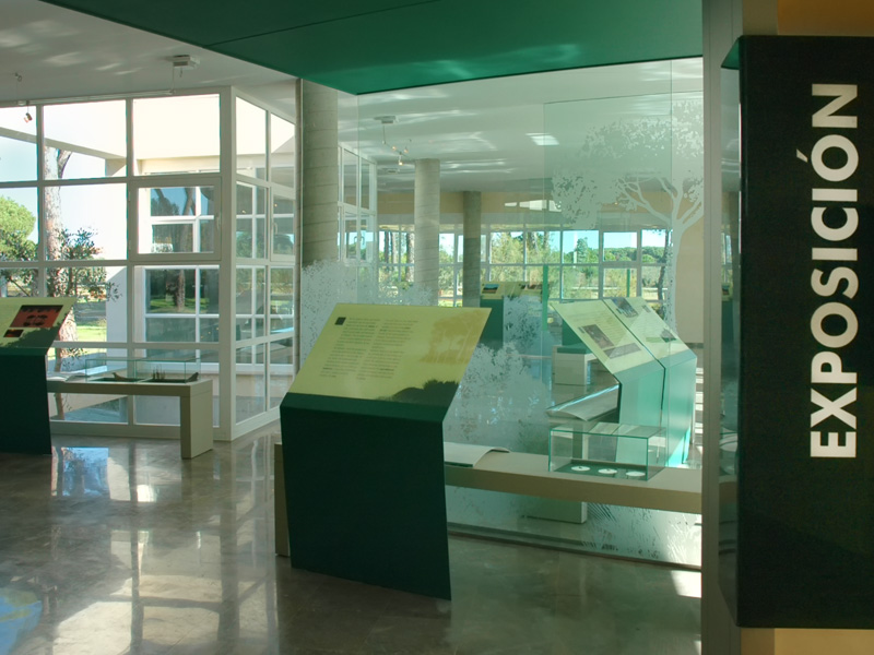 Interiorismo800